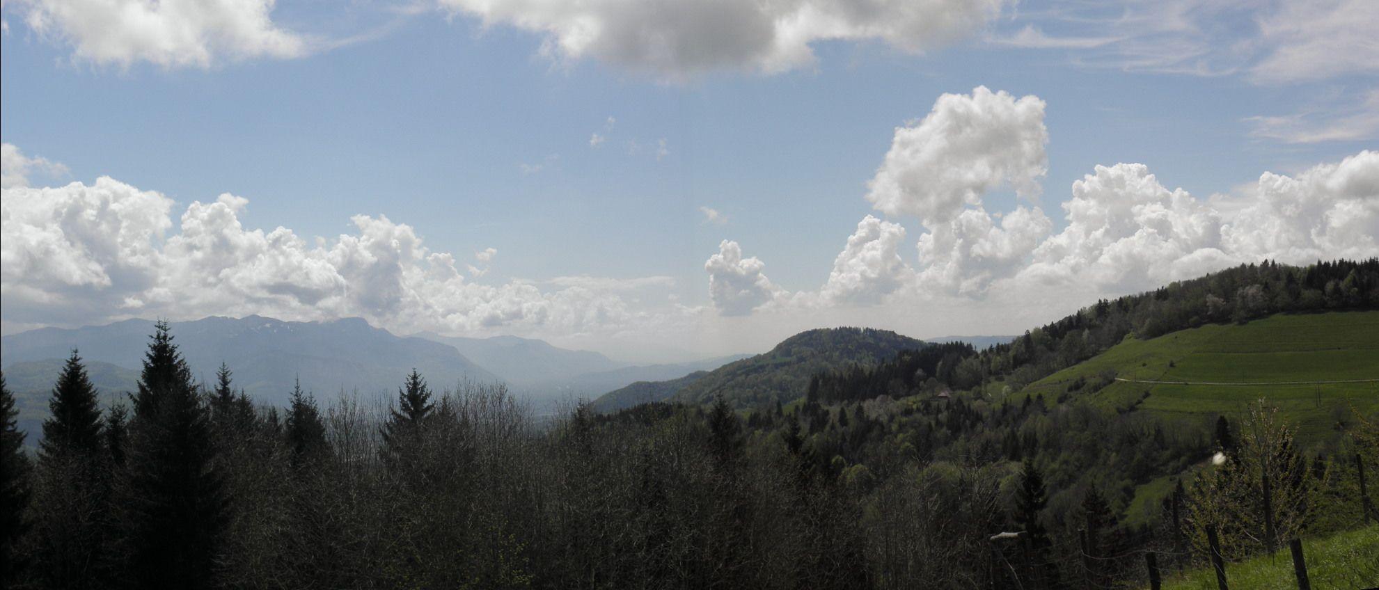 Calme et sérénité sur St Aupres - Isère