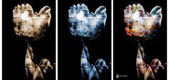 Calyx-Triptychon