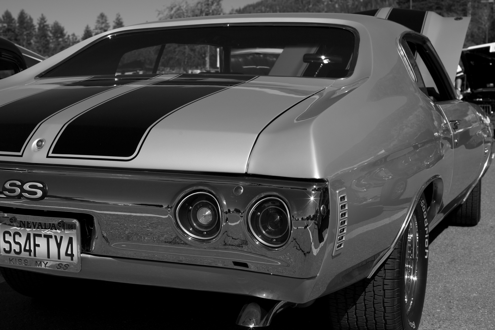 camaro ss the ultimate american muscle car foto & bild | autos