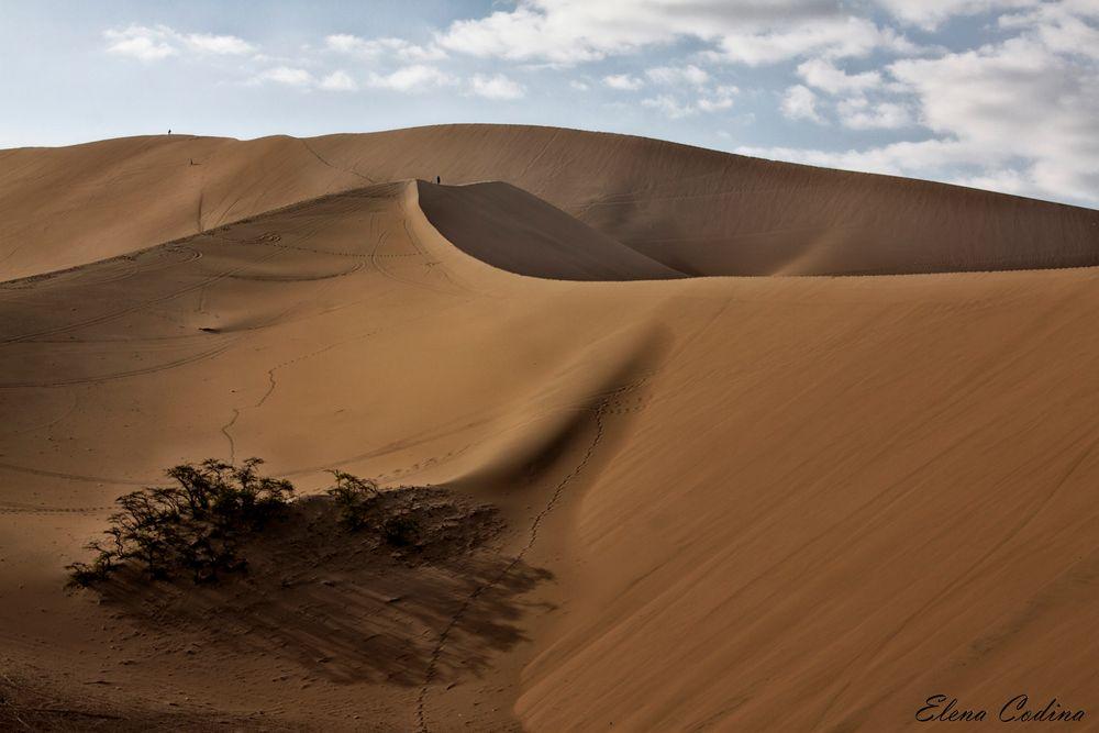 Caminando al filo de la arena