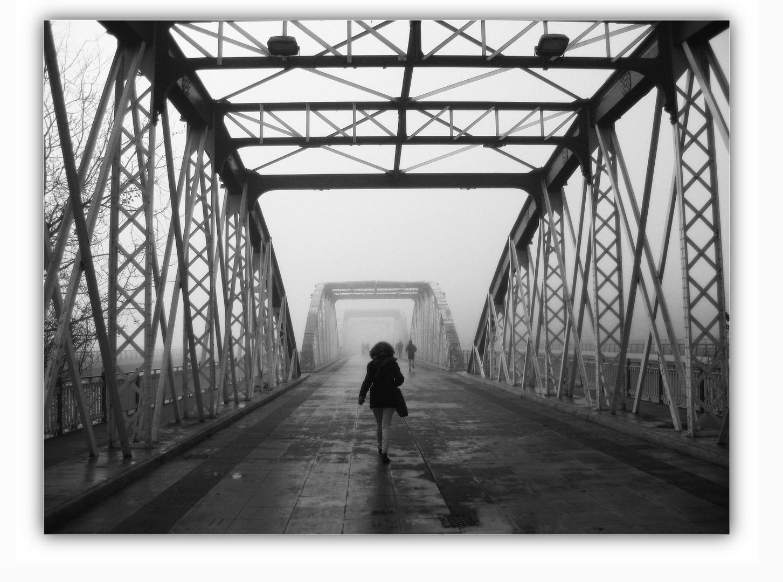 caminando hacia la niebla