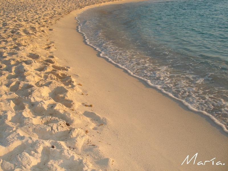 Caminando junto al mar.