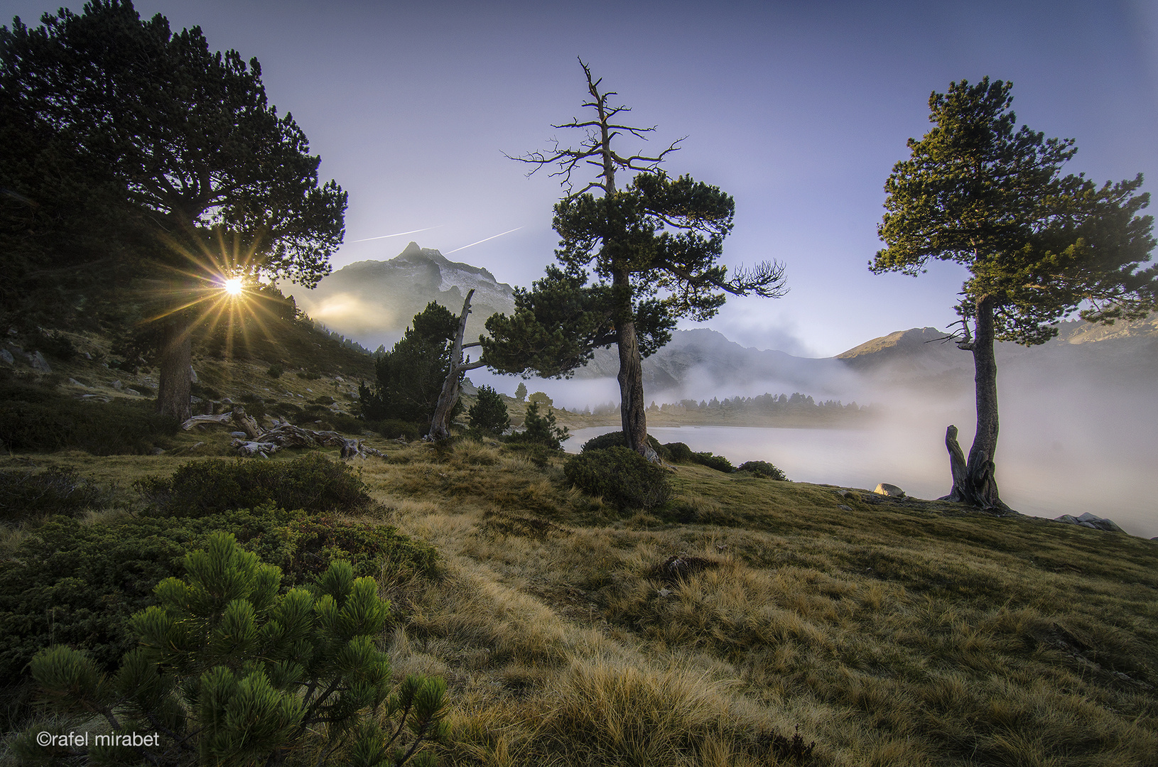 Camino a la luz, (way to the light)