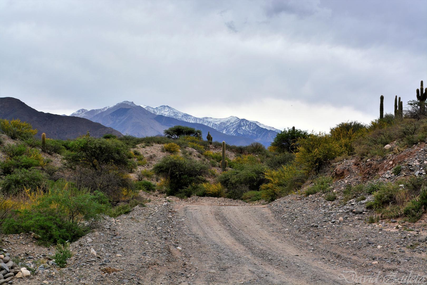 Camino a La Paya