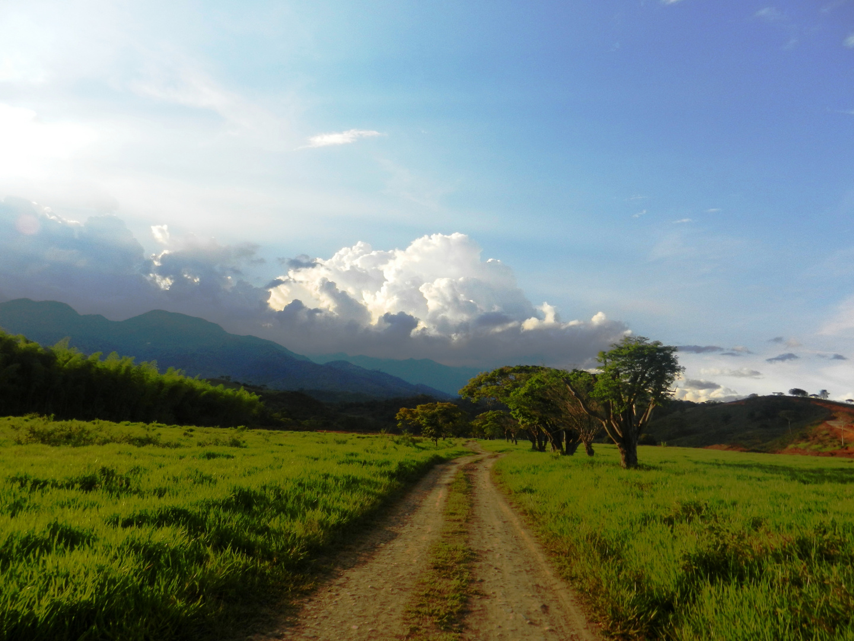 Camino a la tierra prometida