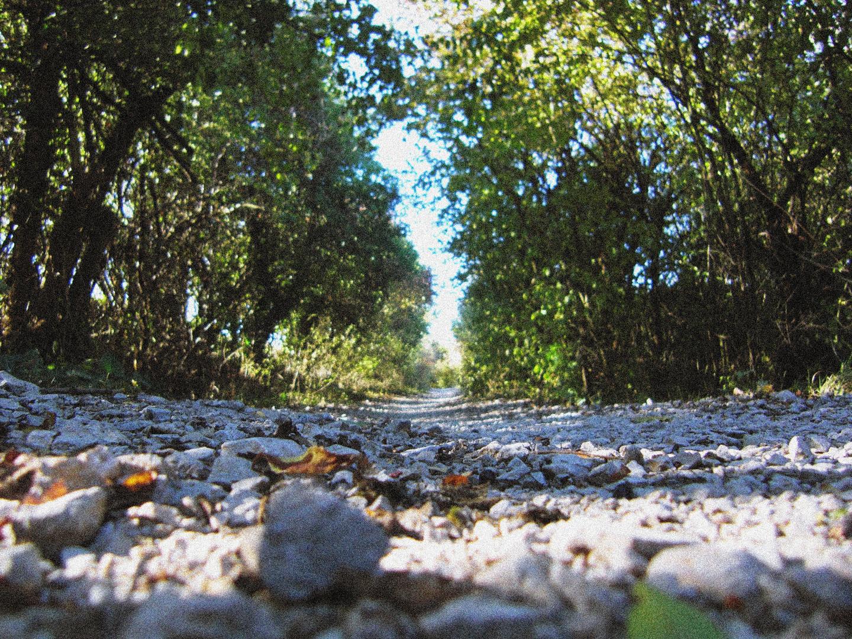 Camino de Santiago - Navarra