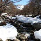 Camino del Glaciar Martial, Ushuaia