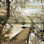 Camino del lago (Landas)