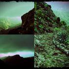 Camino en la Gomera