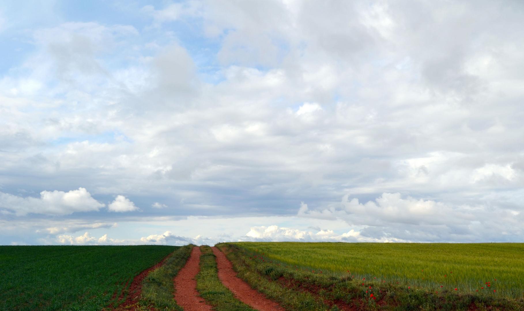 Camino hacia el cielo