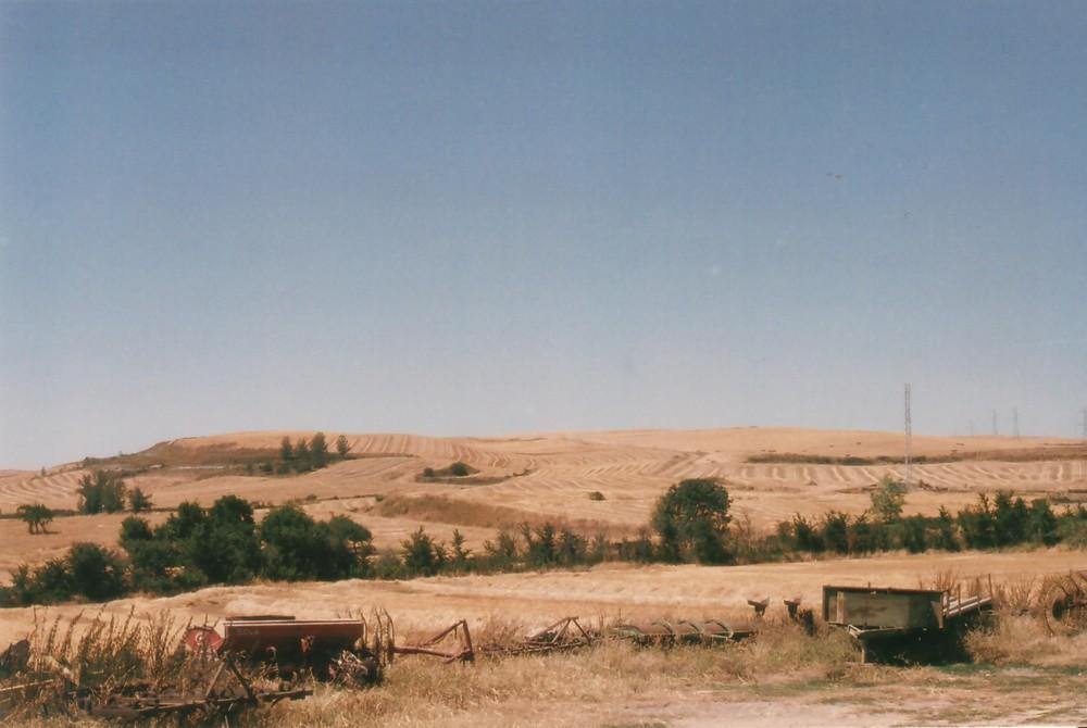 Camino - Landwirtschaft in der Meseta
