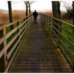 Camminando.....verso l'ignoto....
