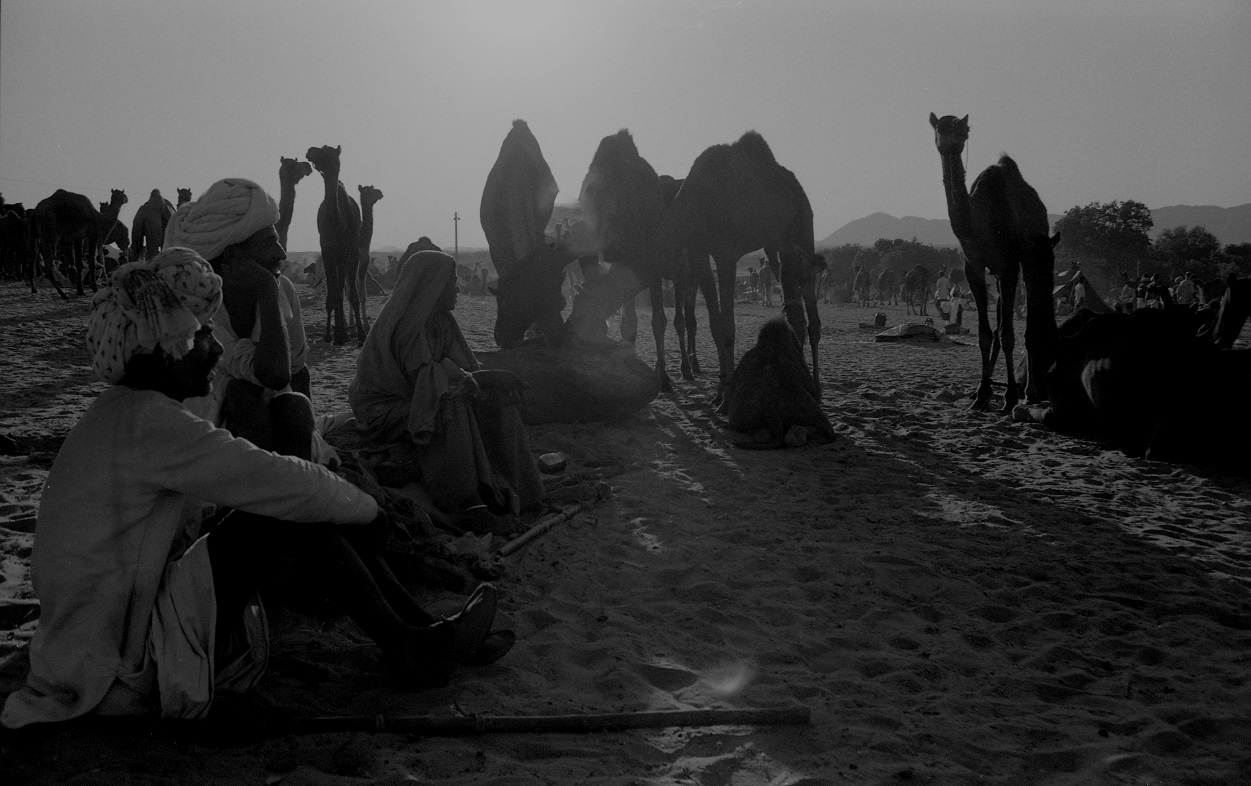 camp fires and camel traders.