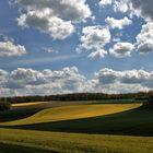 Campagne du Vexin normand au printemps