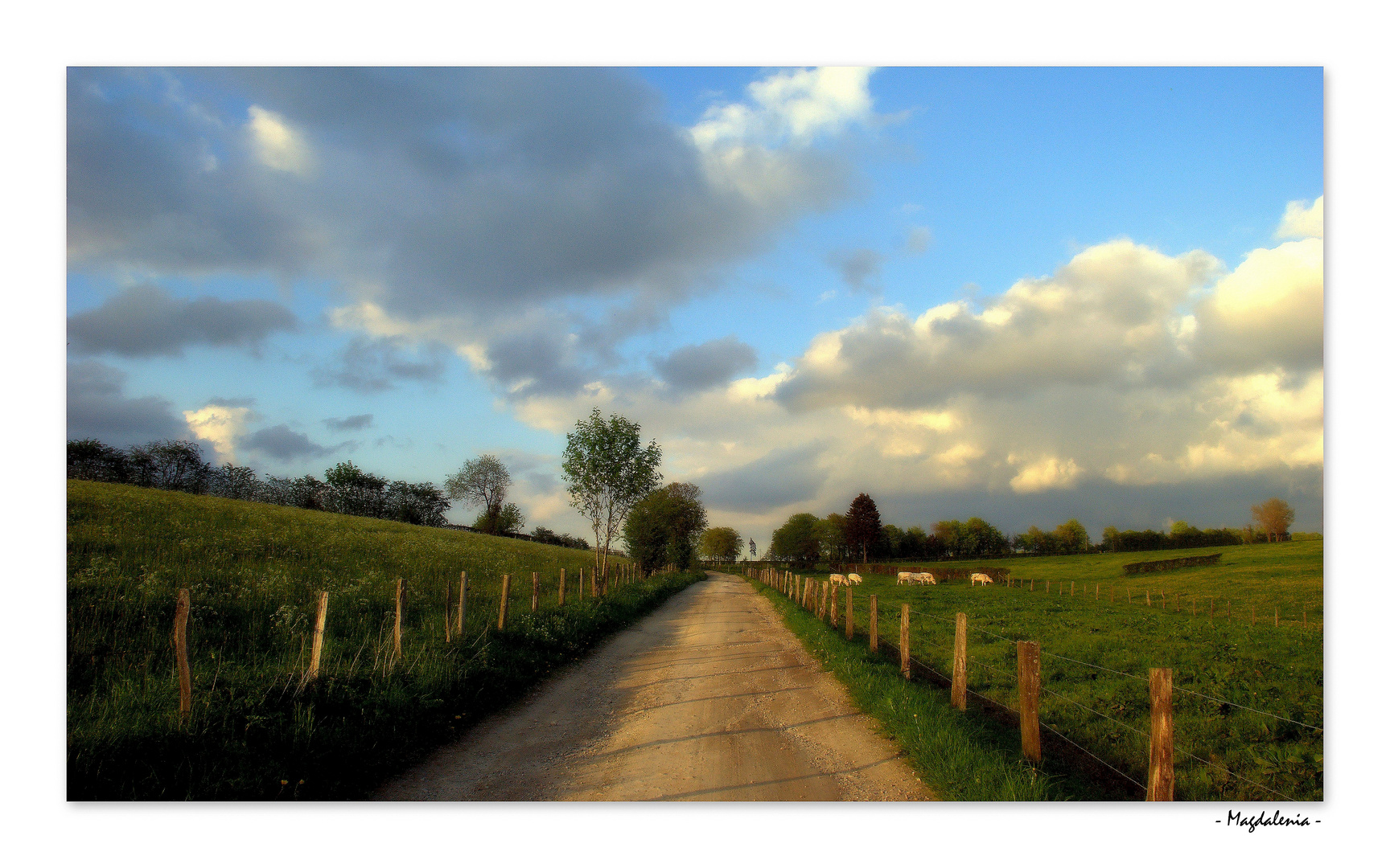 Campagne, ma belle Nature