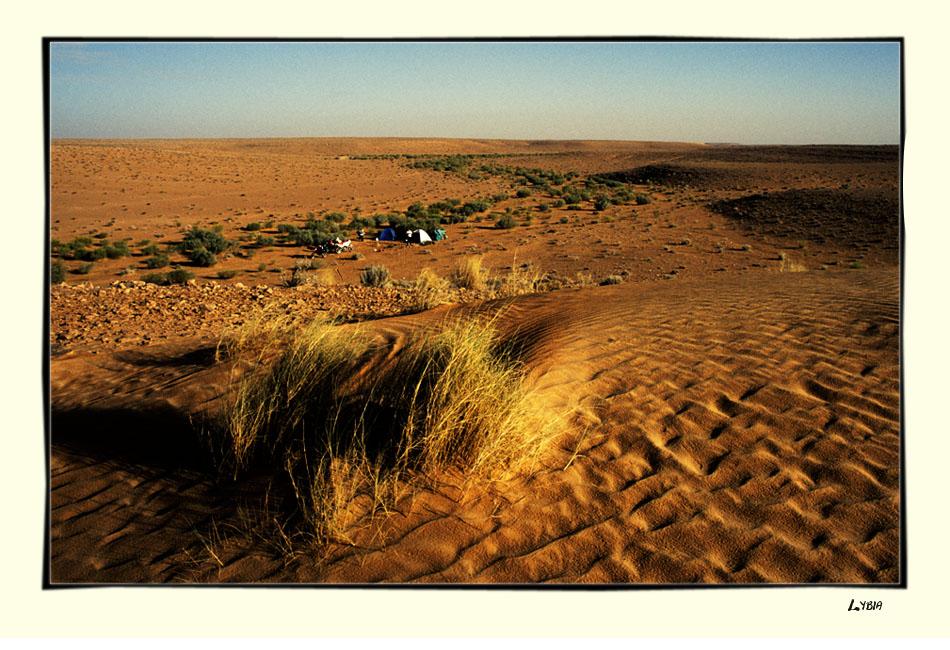 Campen im Wadi...