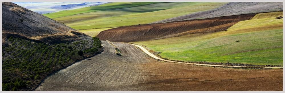 Campos de Castilla. Panorama