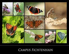 Campus Fichtenhain  Nr.1