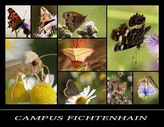 Campus Fichtenhain Nr.3