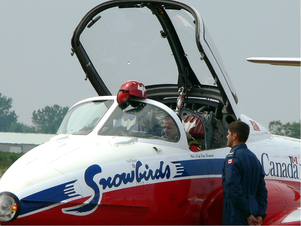 Canadian Snowbirds #1