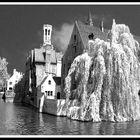 Canal at Brugges, Belgium