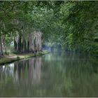 Canal du Midi I