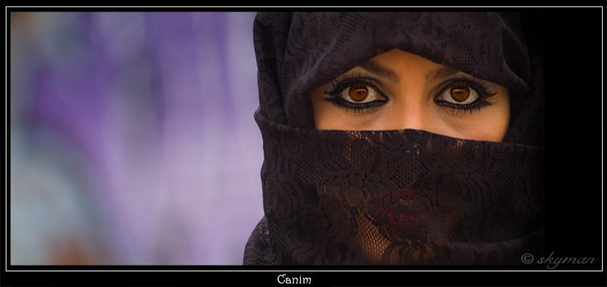Canim II