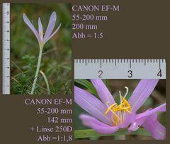 CANON EF-M 55-200 mm  - 1 Objektiv + 1  Linse!
