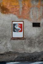 Cantina Salina Vini, Pioltello