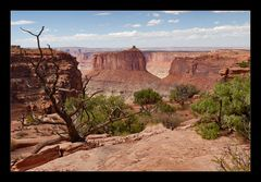 [ Canyonlands ]