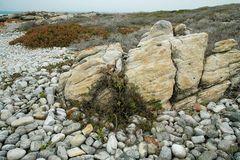 Cape Agulhas Beauty