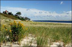 [ Cape Cod: Chatham Beach ]