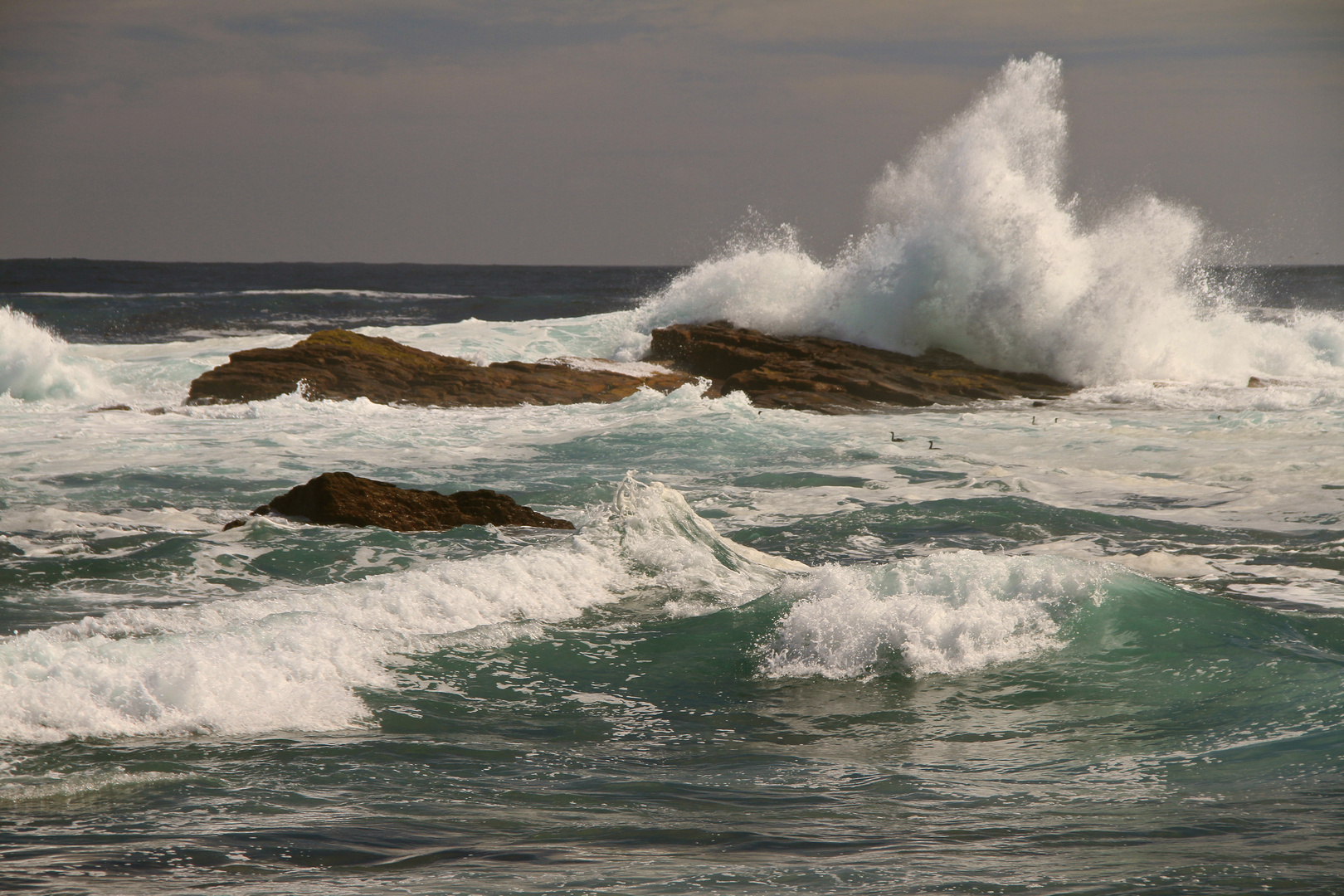 Cape Point, South Africa, 2012