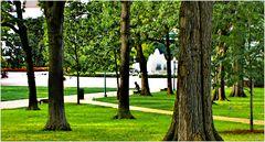 Capitol Hill Summer - A Quiet Moment ...