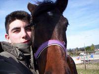 Caprice HorseValley