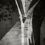 Caprichos de la luz