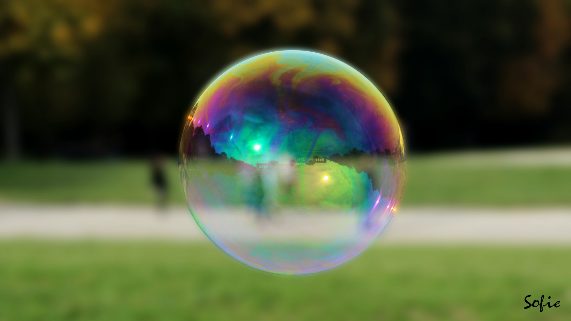 Captured in a bubble