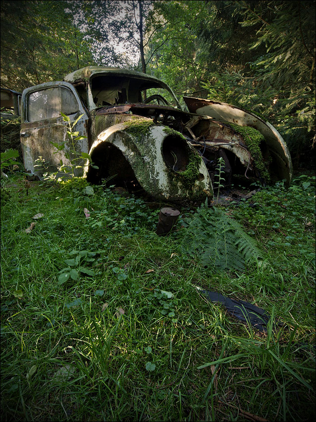 Car Cemetery I