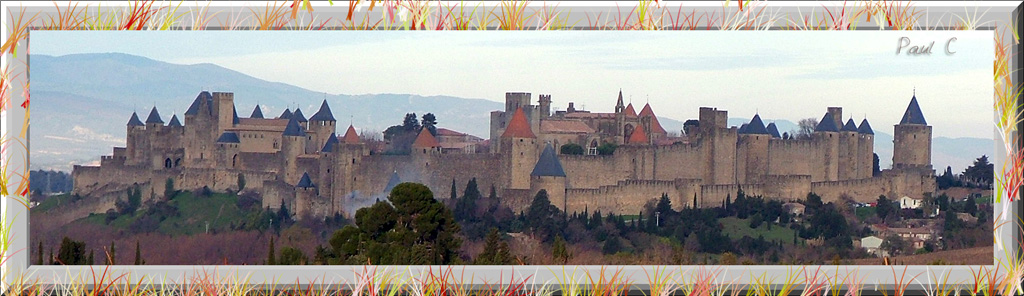 Carcassonne from far
