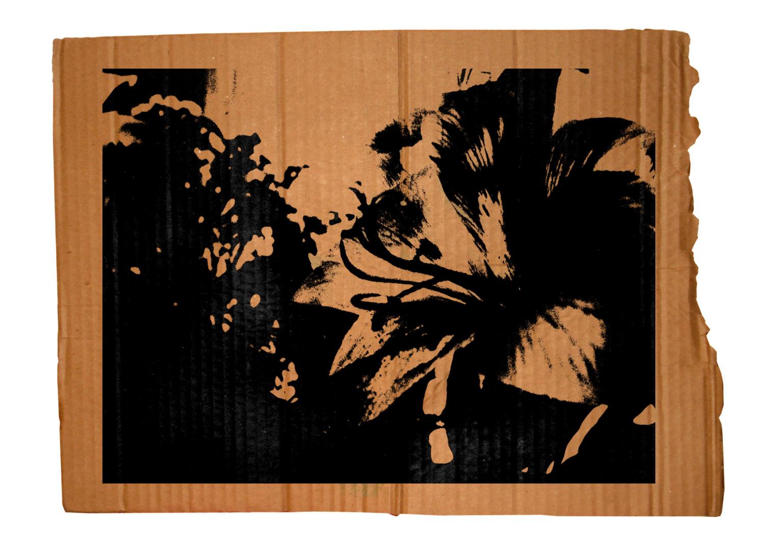 Cardboard Series #2