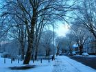 Cardiff in Snow