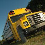 caribbean bus