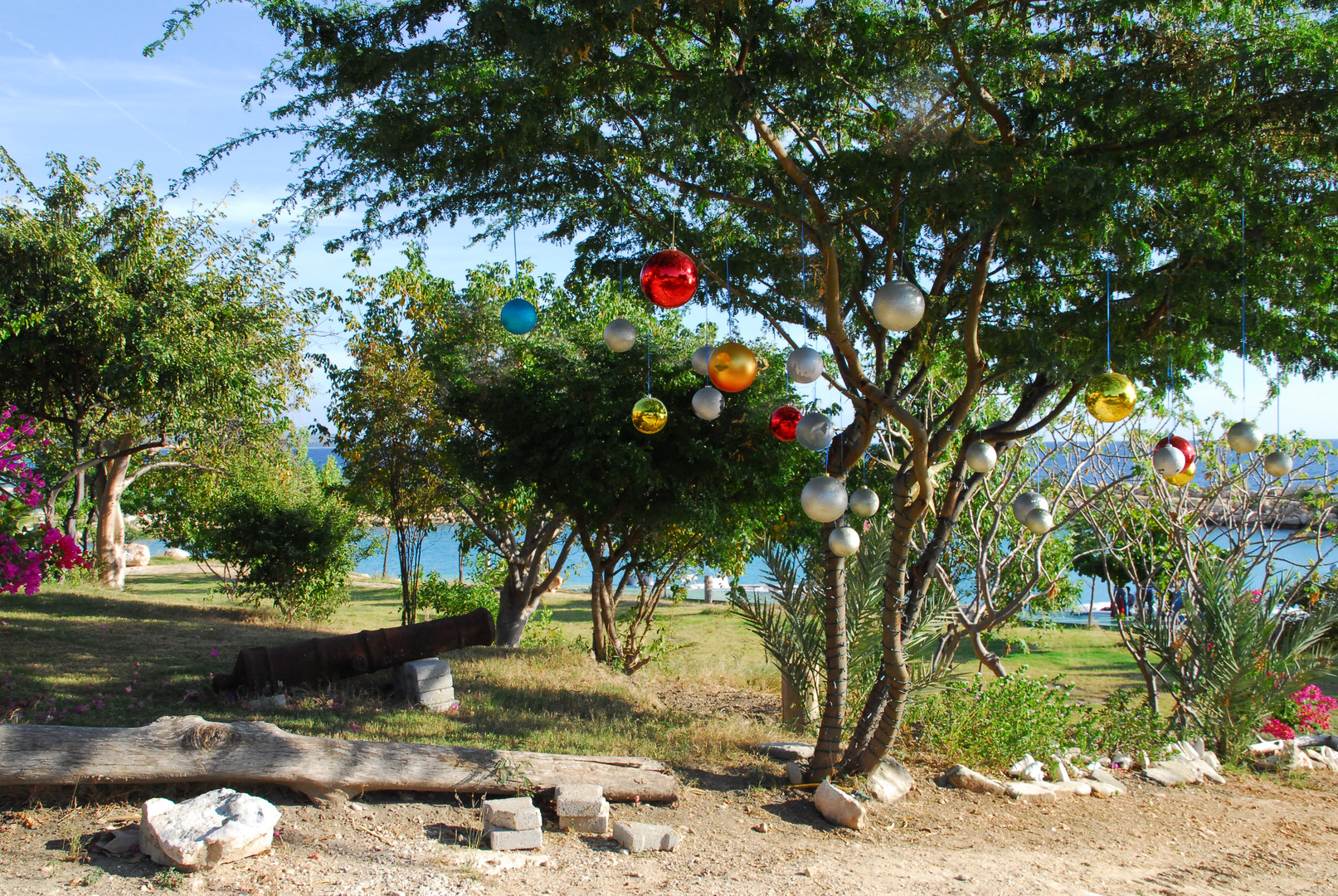 Caribbean Christmas Tree
