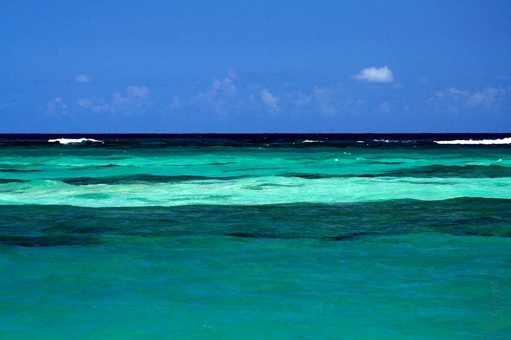 Caribbean Sea III