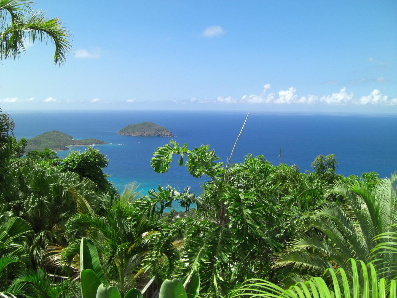 Caribbean Sea (St. Thomas)