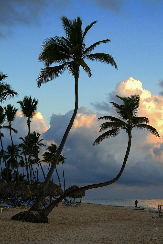 Caribbean Sea VI