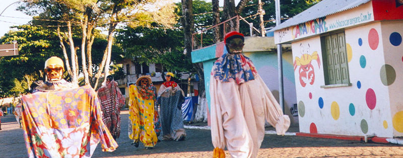 Carnaval Cropped