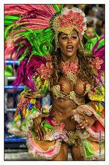 Carnival in Rio de Janeiro 2013 - Sambodromo [III]