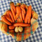 Carottes / Zanahorias / Karotten