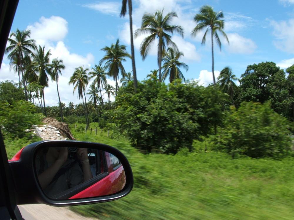 Carretera Tropical